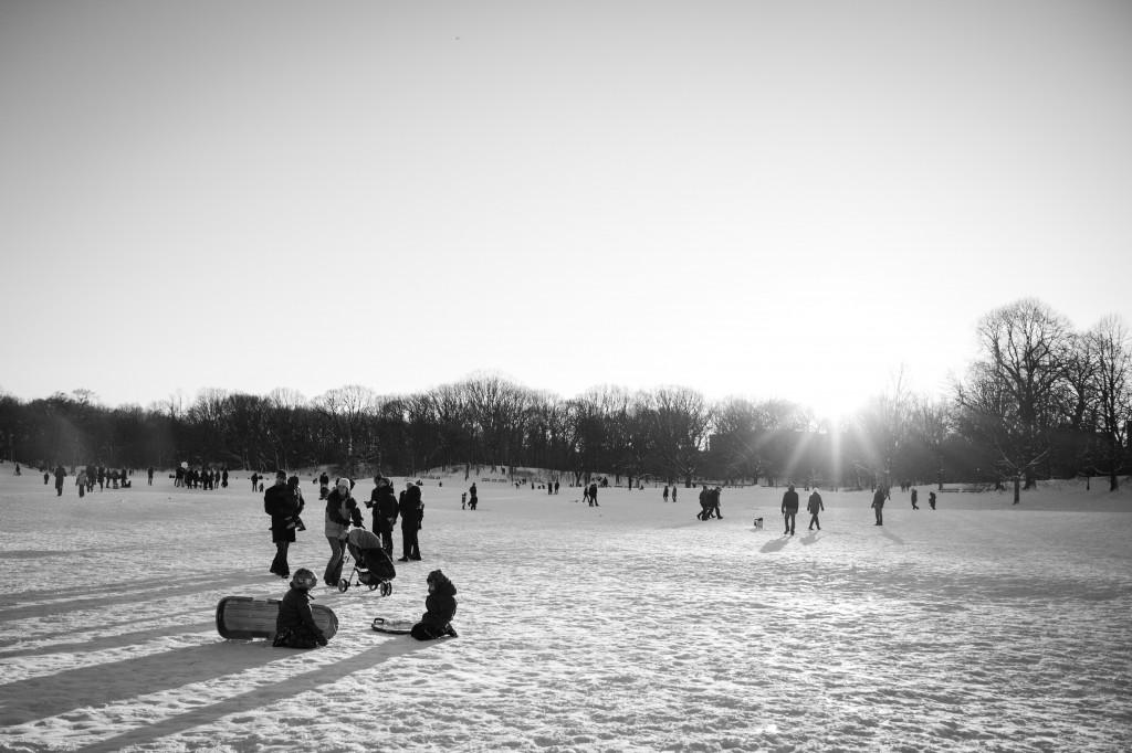 snow-300